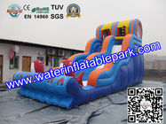 Inflatable Water Slide For Amusement Park  / Inflatable Pool Slide for sale